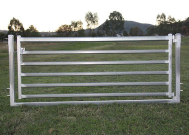 "China Portable Sheep Yard Panels 16""X 48"" Galvanized 40mm Square Pipe Material supplier"
