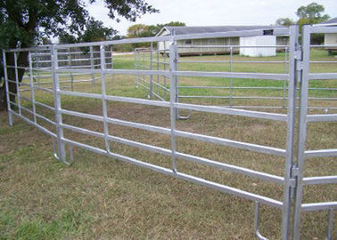 China Heavy Duty Cattle Yard Panels And Gate 80G Zinc Coated 80MM Tube Easy Install supplier