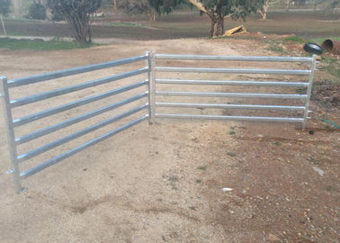 China Portable Gate Panels / Sheep Yard Panels 0.9 Meter X 2.1 Meter Square Tube 50mm supplier