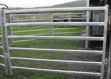 China Livestock Fence Panel With Oval Tube 30X60MM  Vertical Tube 40X1.5MM For New Zealand Market supplier