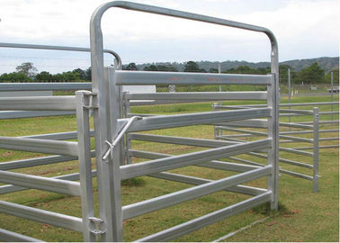 China Heavy Duty Galvanized Cattle Yard Horse Fence Panel Gate Line Post 50MM supplier