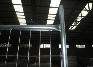 China Safety Removable Swimming Pool Fencing , Temporary Chain Link Fence Panels supplier