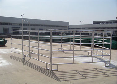 China 1.8*2.4m cattle yard panels round oval stainless steel pipe SGS approved supplier