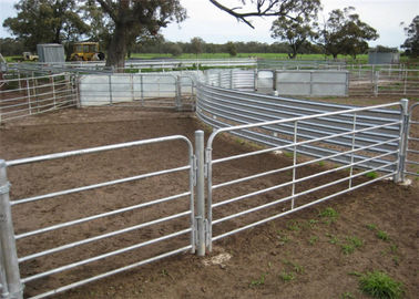 China Customized size farm fence panels , cattle yard gates hot dip galvanized surface treatment supplier