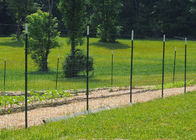 China Heavy Duty Metal T Post / Green Fence Post Low Carbon Steel Material company
