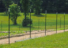 Heavy Duty Metal T Post / Green Fence Post Low Carbon Steel Material