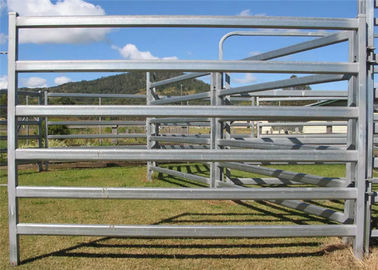 China High Durable Cattle Yard Panels / Portable Gate Panels With Galvanized Pipe factory