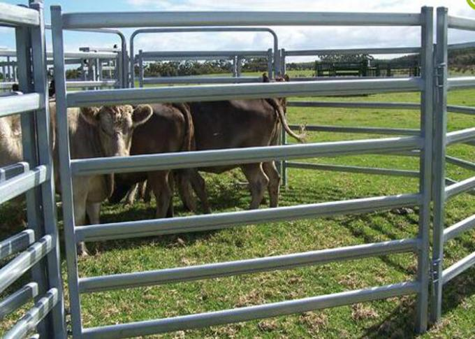 Heavy Duty Galvanized Cattle Yard Horse Fence Panel Gate Line Post 50MM