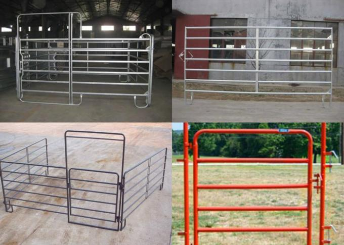 Green Pvc Coated Cattle Yard Panels 38MM Out Frame Pipe With 6 Rail