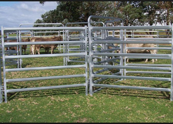 Low Carbon Steel Metal 1.8*2.1m Cattle Yard Panels 0
